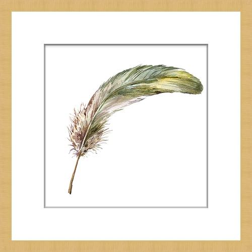 Quaint Feathers 2