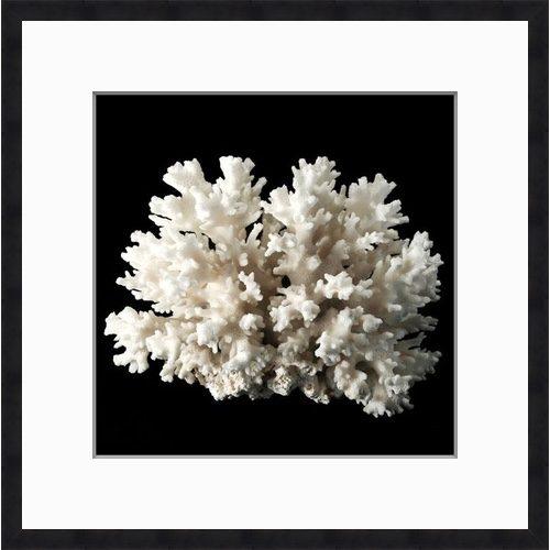 Coral 1 Black Square