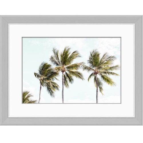 Tropoical Palms II
